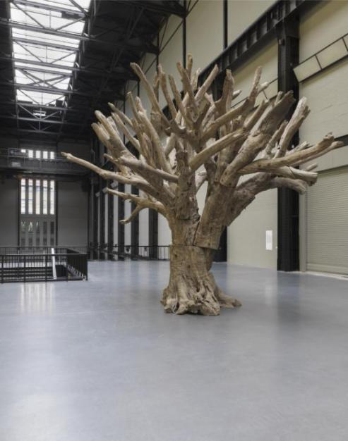 Tree 2010 Ai Weiwei born 1957 Purchased with funds provided by Tate International Council, Tate Patrons and Yuz Foundation with support from Ai Weiwei 2016 http://www.tate.org.uk/art/work/T14630